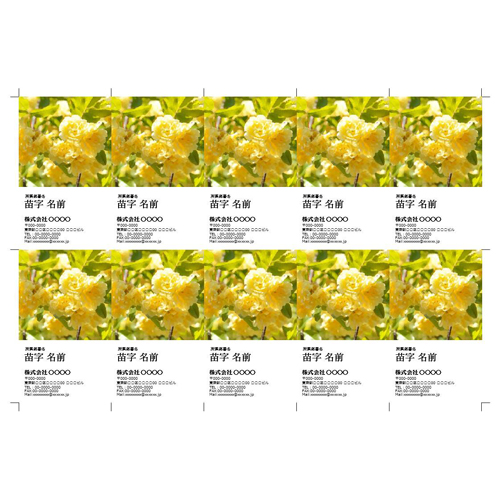 名刺 (写真入り・縦型・シンプル・A4)