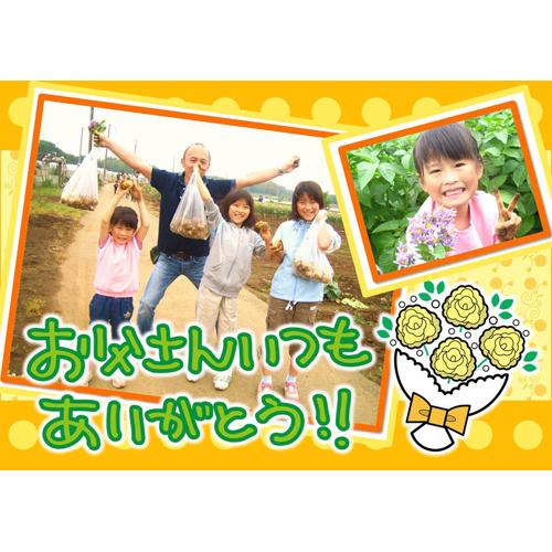 カード 父の日 メッセージ(写真付き・花・イエロー・A4)