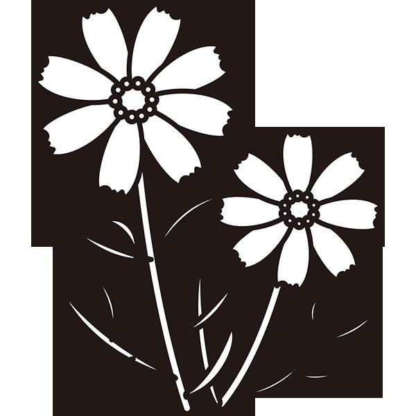 植物 コスモス(モノクロ)