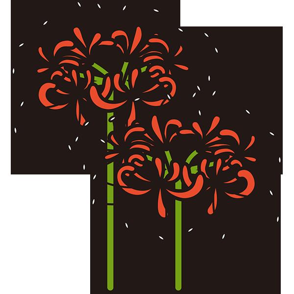 植物 彼岸花(赤色)(カラー)