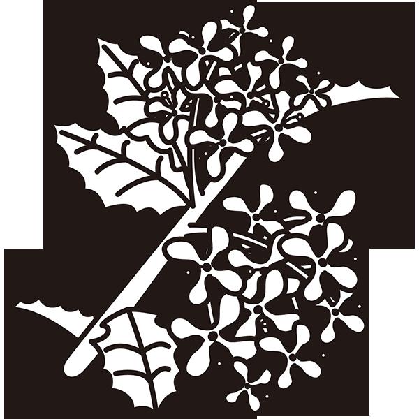 植物 ヒイラギ(モノクロ)