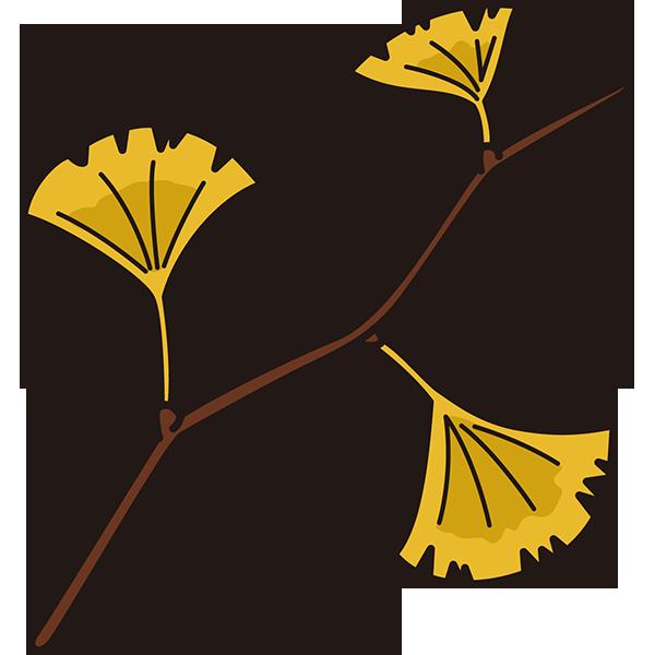 植物 イチョウ(黄色)(カラー)