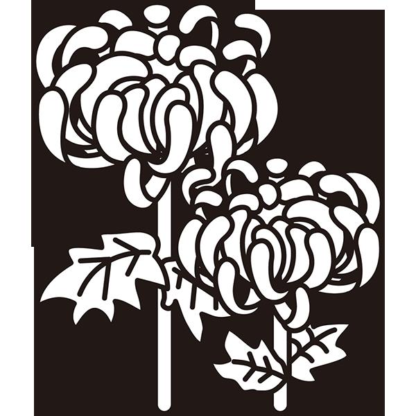 植物 菊(モノクロ)