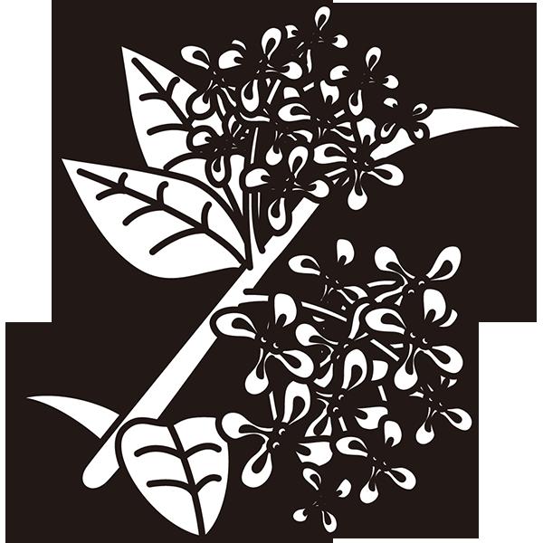 植物 キンモクセイ(モノクロ)
