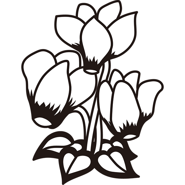 植物 シクラメン(モノクロ)