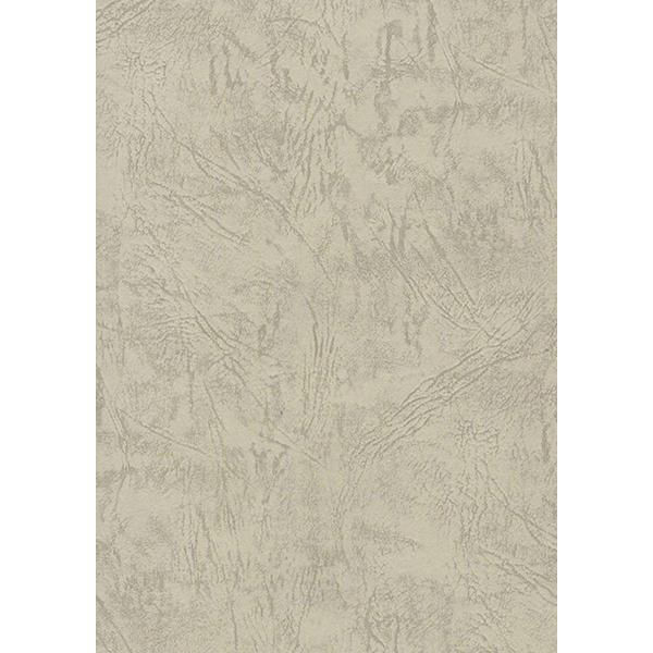 背景画像 和紙のテクスチャ(ベージュ)(カラー)