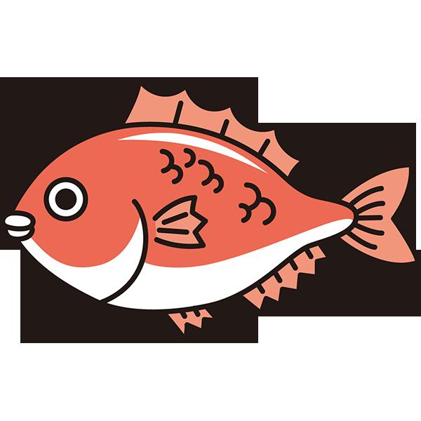 食品 鯛(タイ)(カラー)