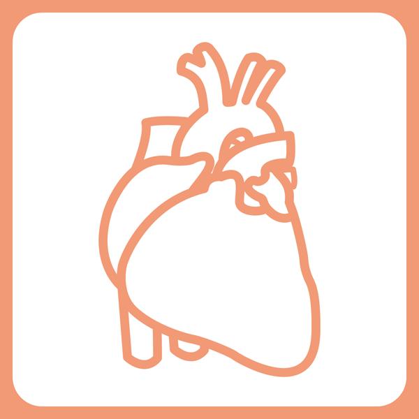 医療 循環器内科アイコン(カラー)