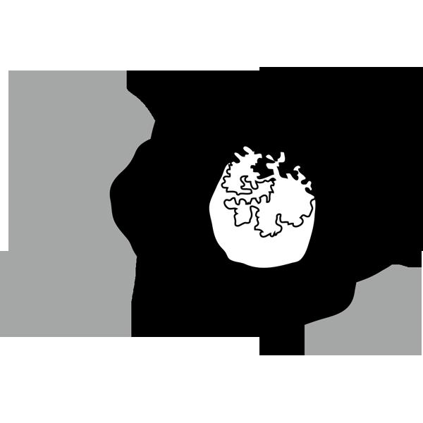 年中行事 椿(つばき)(モノクロ)