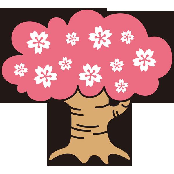 年中行事 桜(桜の木)(カラー)