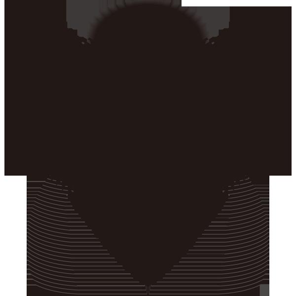 かつら(百日かつら)(カラー)