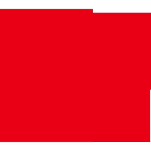 かつら(アフロヘアー・赤色)(カラー)