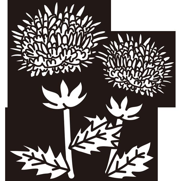 植物 紅花(モノクロ)