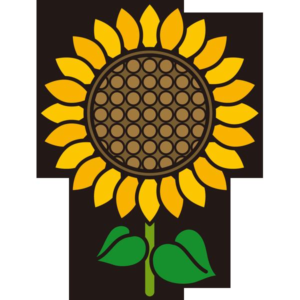 植物 ひまわり(黄色)(カラー)
