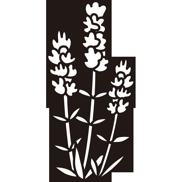 植物 ラベンダー(モノクロ)