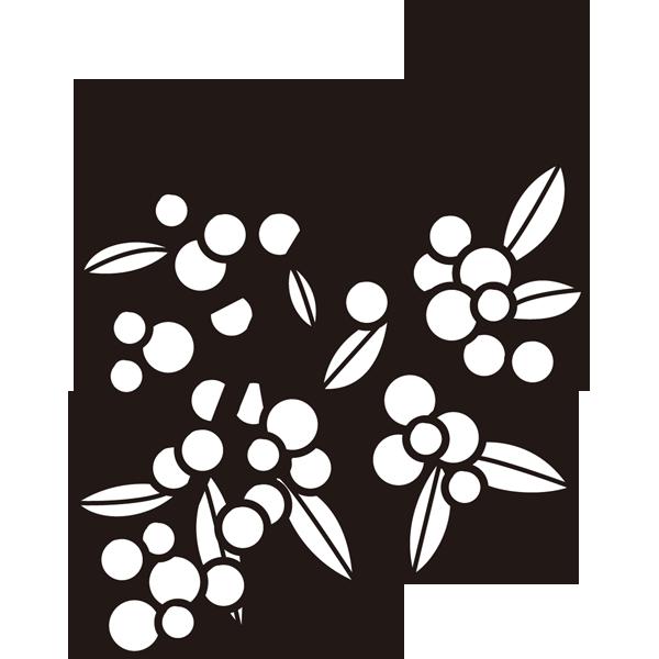 植物 ナンテン(モノクロ)