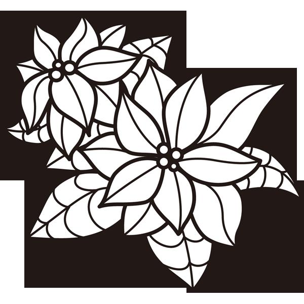 植物 ポインセチア(モノクロ)