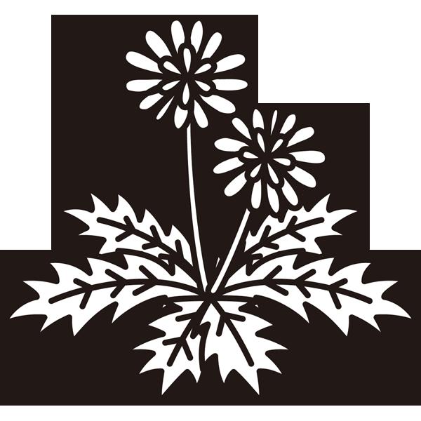植物 たんぽぽ(モノクロ)