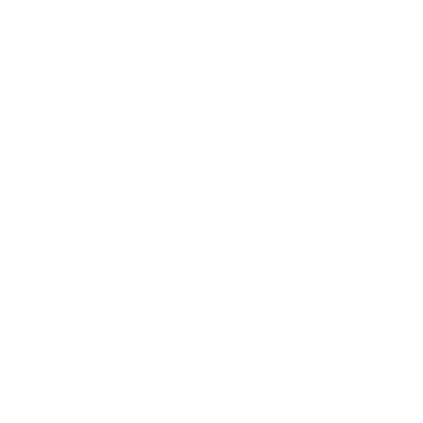 装飾 レース(円)(カラー)