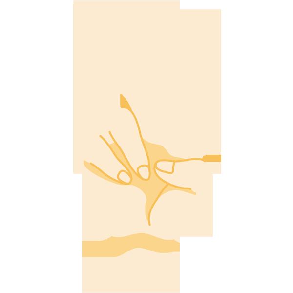 手(2/ピース)(正面)