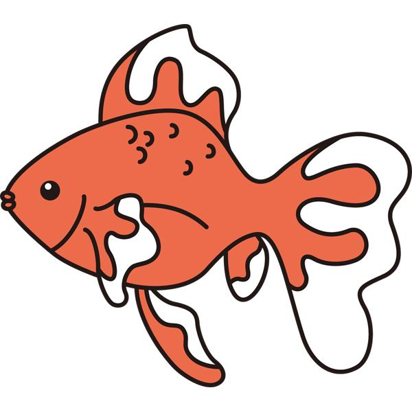 動物 金魚(カラー)