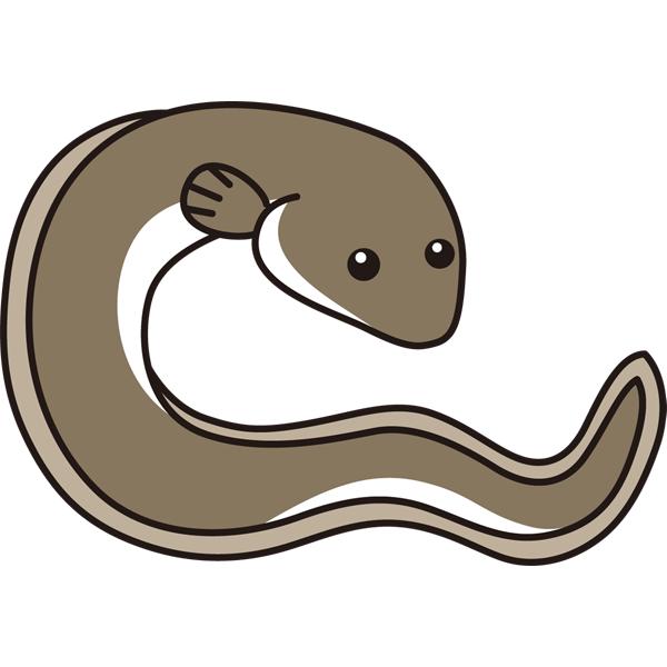 動物 魚(うなぎ)(カラー)