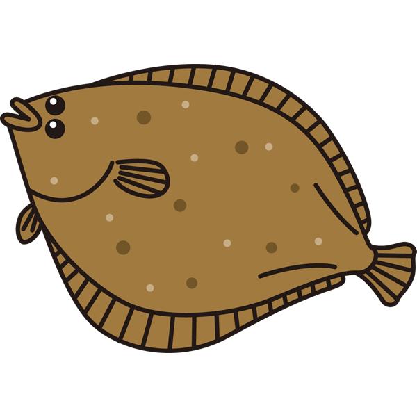 動物 魚(ヒラメ)(カラー)