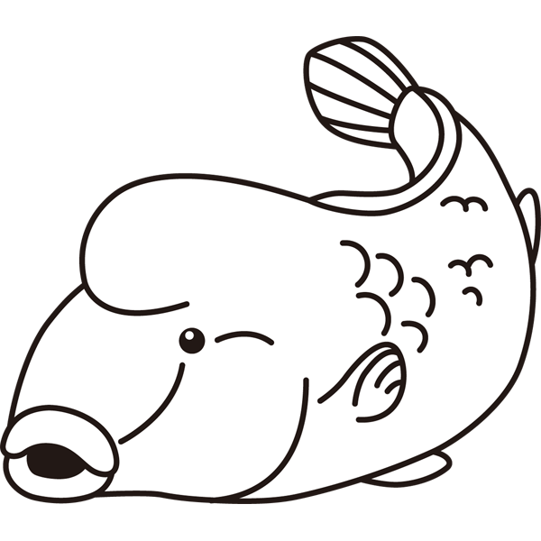 動物 魚(ナポレオンフィッシュ)(モノクロ)