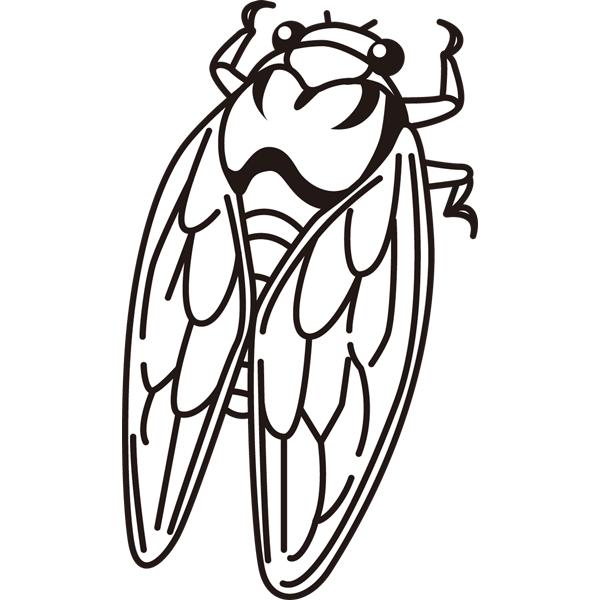 動物 虫(せみ)(モノクロ)