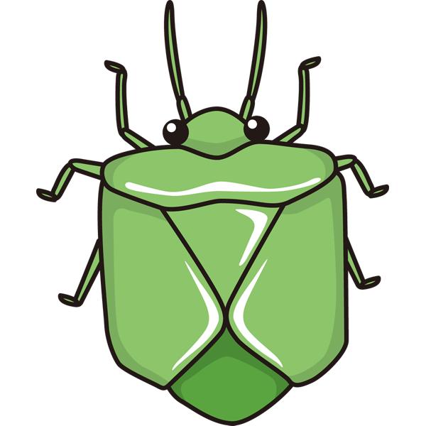 動物 虫(カメムシ)(カラー)