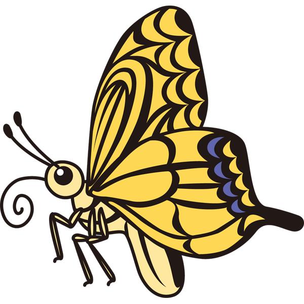 動物 アゲハ蝶(カラー)