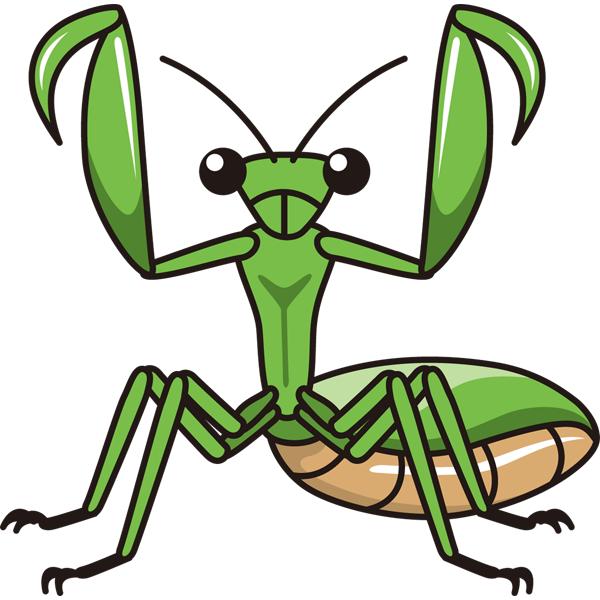 動物 虫(カマキリ)(カラー)