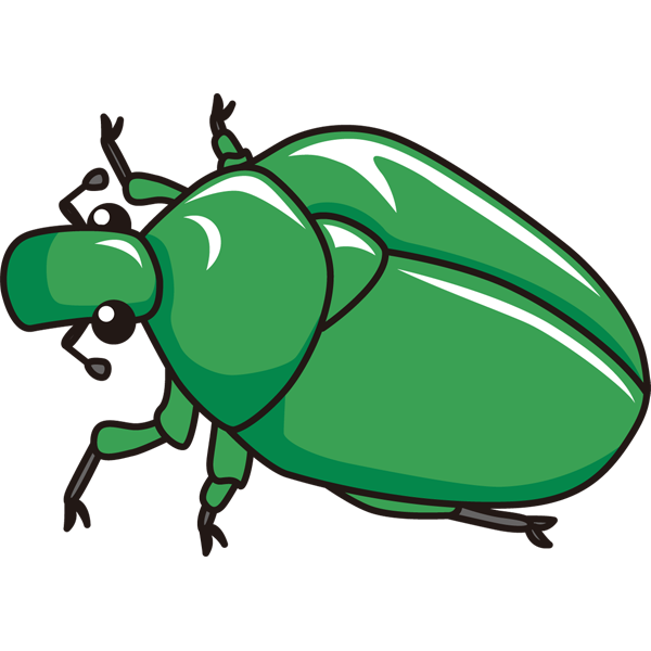 動物 虫(カナブン)(カラー)
