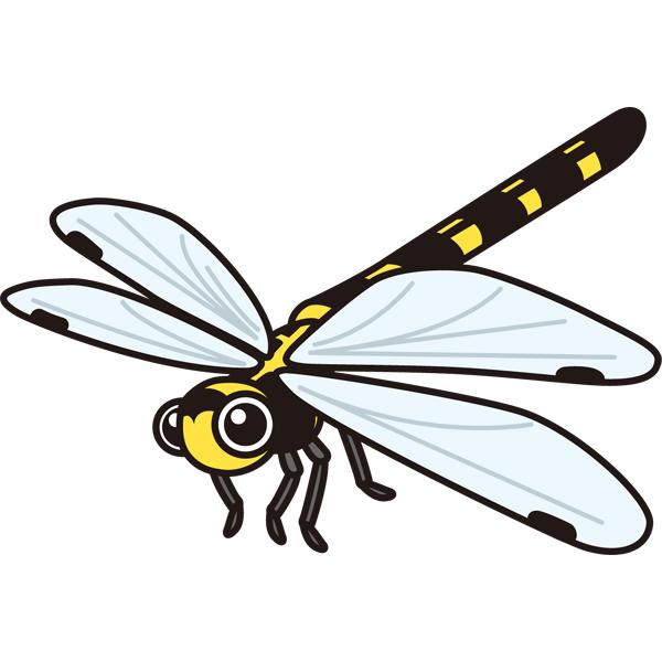 動物 虫(トンボ)(カラー)
