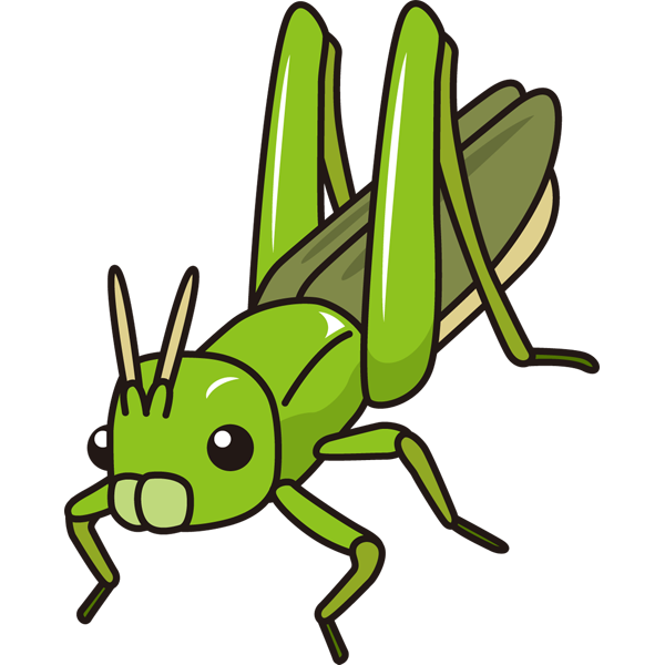 動物 虫(バッタ)(カラー)