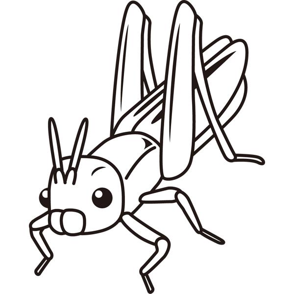 動物 虫(バッタ)(モノクロ)
