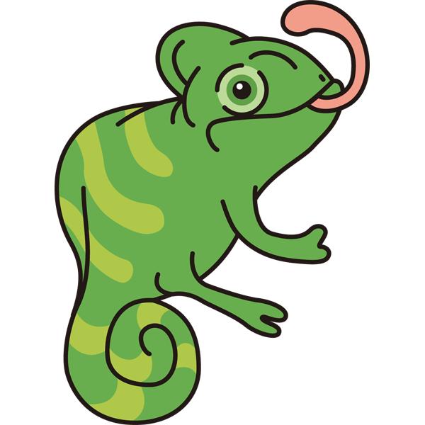 動物 カメレオン(カラー)