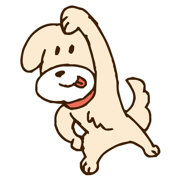 ストレッチ運動をするイヌ