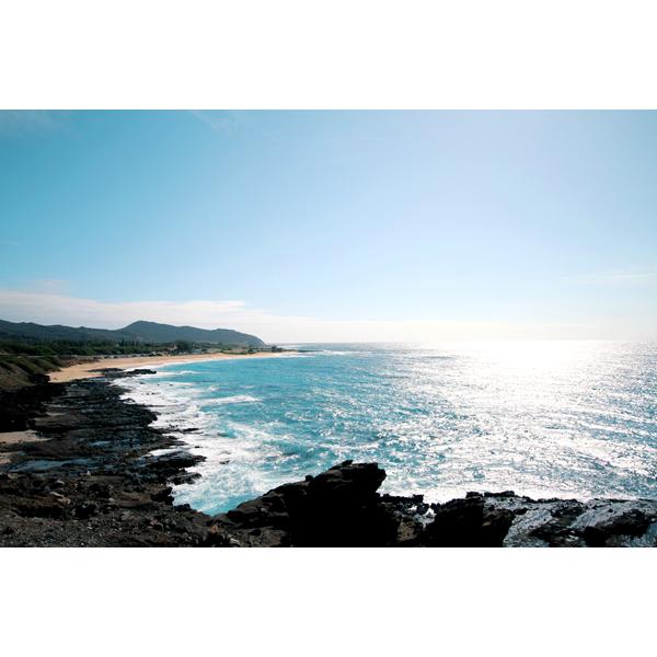 ハワイ 海 岩場