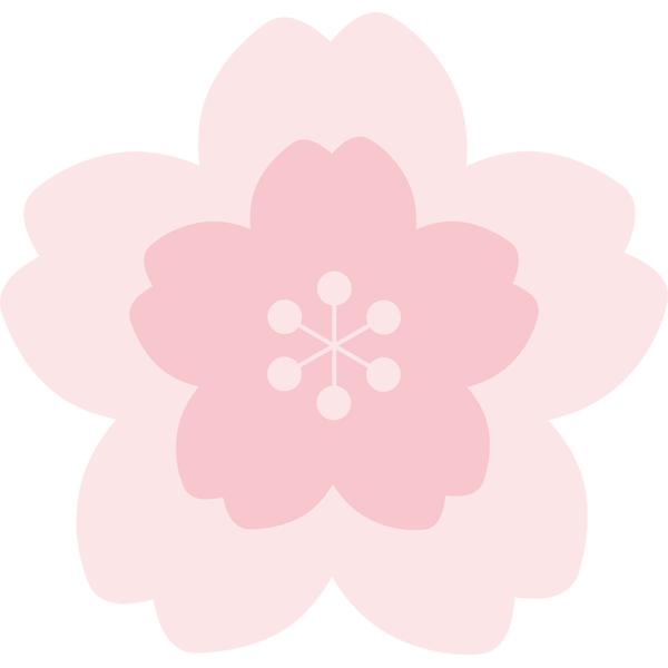 桜の花 うすピンク色