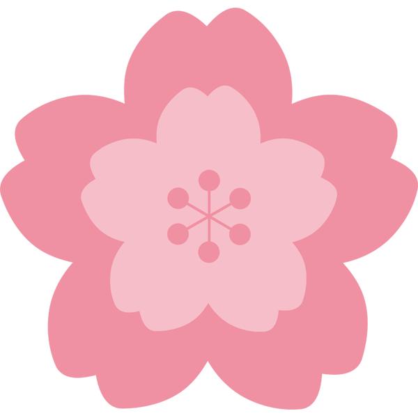 桜の花 濃いピンク色
