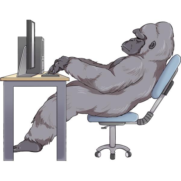 ゴリラ PC 寝姿勢