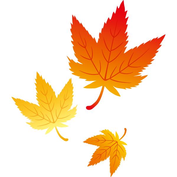 紅葉の葉っぱ(複数)