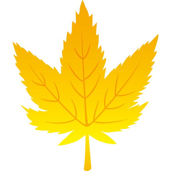 紅葉の葉っぱ(黄)