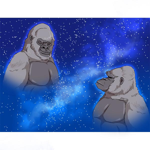 ゴリラ 宇宙