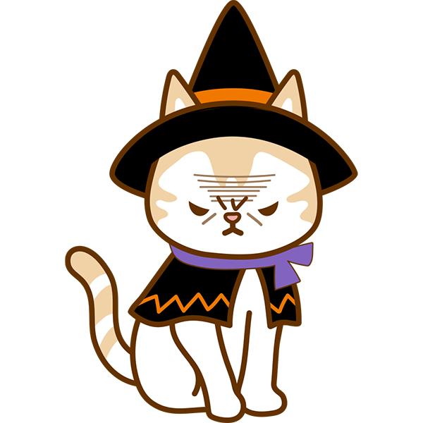 ハロウィン 猫 怒り顔