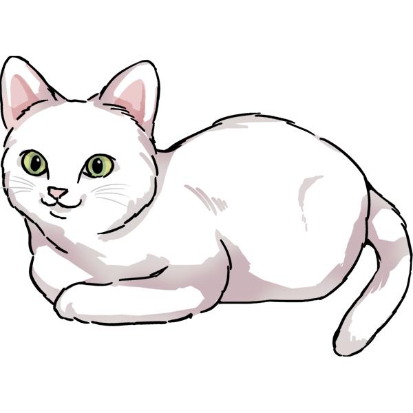 猫 リアル 香箱座り 伏せる