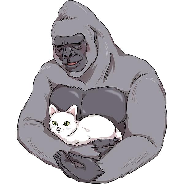 ゴリラ 猫を抱っこ