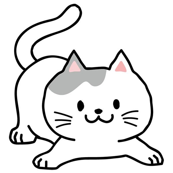 猫 伏せる