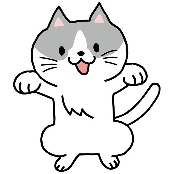 猫 両手をあげる